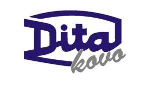 http://www.dita.cz/divize-kovo